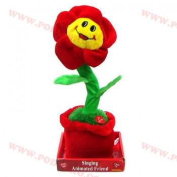 Пеещо и танцуващо цвете на промоция