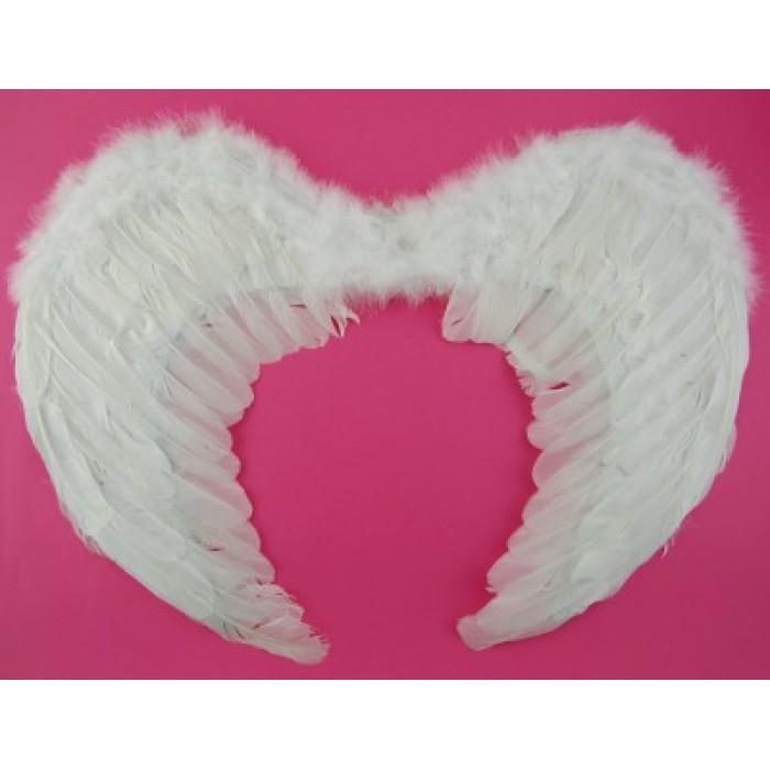 Ангелски крила - 65х48см