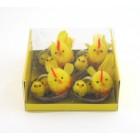 Комплект пиленца в кошничка