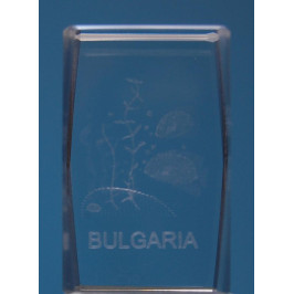Безцветен стъклен куб с триизмерно гравирани две рибки и надпис България