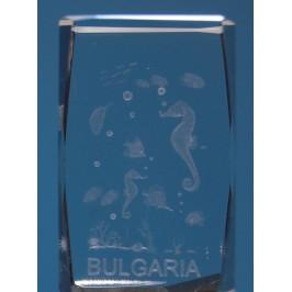 Безцветен стъклен куб с триизмерно гравирани морски обитатели и надпис България