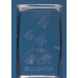 Безцветен стъклен куб с триизмерно гравирани - рибки и надпис България