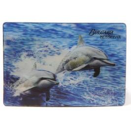 Магнитна пластинка с холограмни изображения - Капитанска среща - Несебър и два делфина