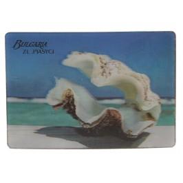 Магнитна пластинка с холограмни изображения - Златни пясъци и мида