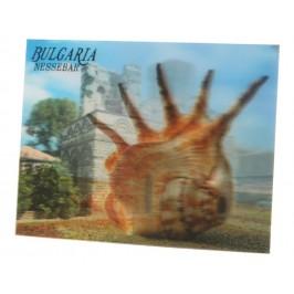 Магнитна пластинка с холограмни изображения - пентократ в Несебър и рапан