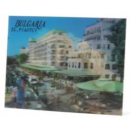 Магнитна пластинка с холограмни изображения - хотели в Златни пясъци и голяма мида