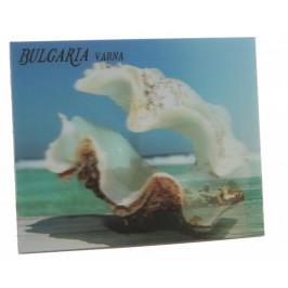 Магнитна пластинка с холограмни изображения - морския фар във Варна и голяма мида