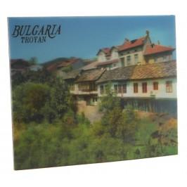 Магнитна пластинка с холограмни изображения - старинни къщи в Троян и слънчогледи