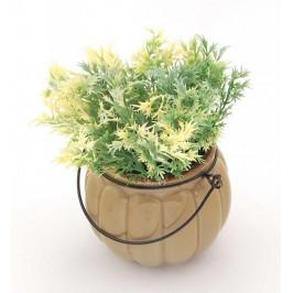 Декоративно цвете в саксия - тип тиква с телена дръжка