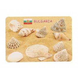 Сувенирна магнитна пластинка - пясък с миди и рапани, България
