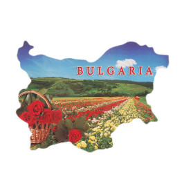 Сувенирна магнитна пластинка - поле с българска маслодайна роза - контури на България