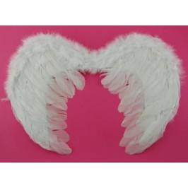 Ангелски крила - 53х37см