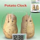 Картофен часовник - образователен научен комплект
